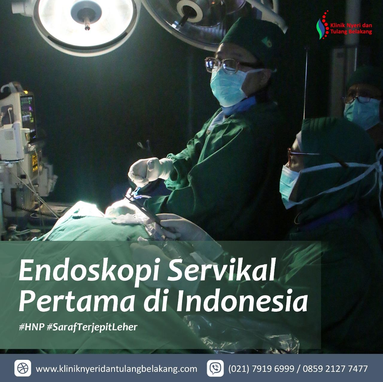 Endoskopi PECD