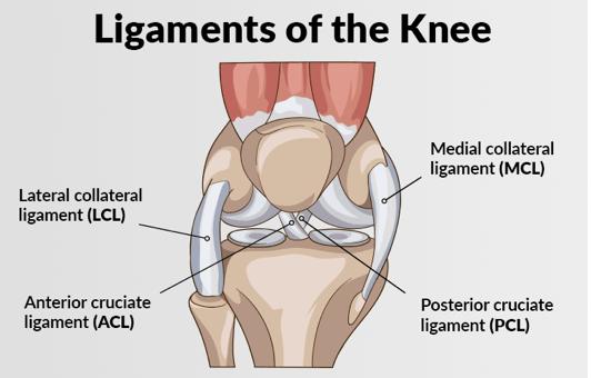Cedera ligamen pada bagian lutut