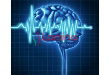 Hasil persiapan pemeriksaan diagnostik EEG