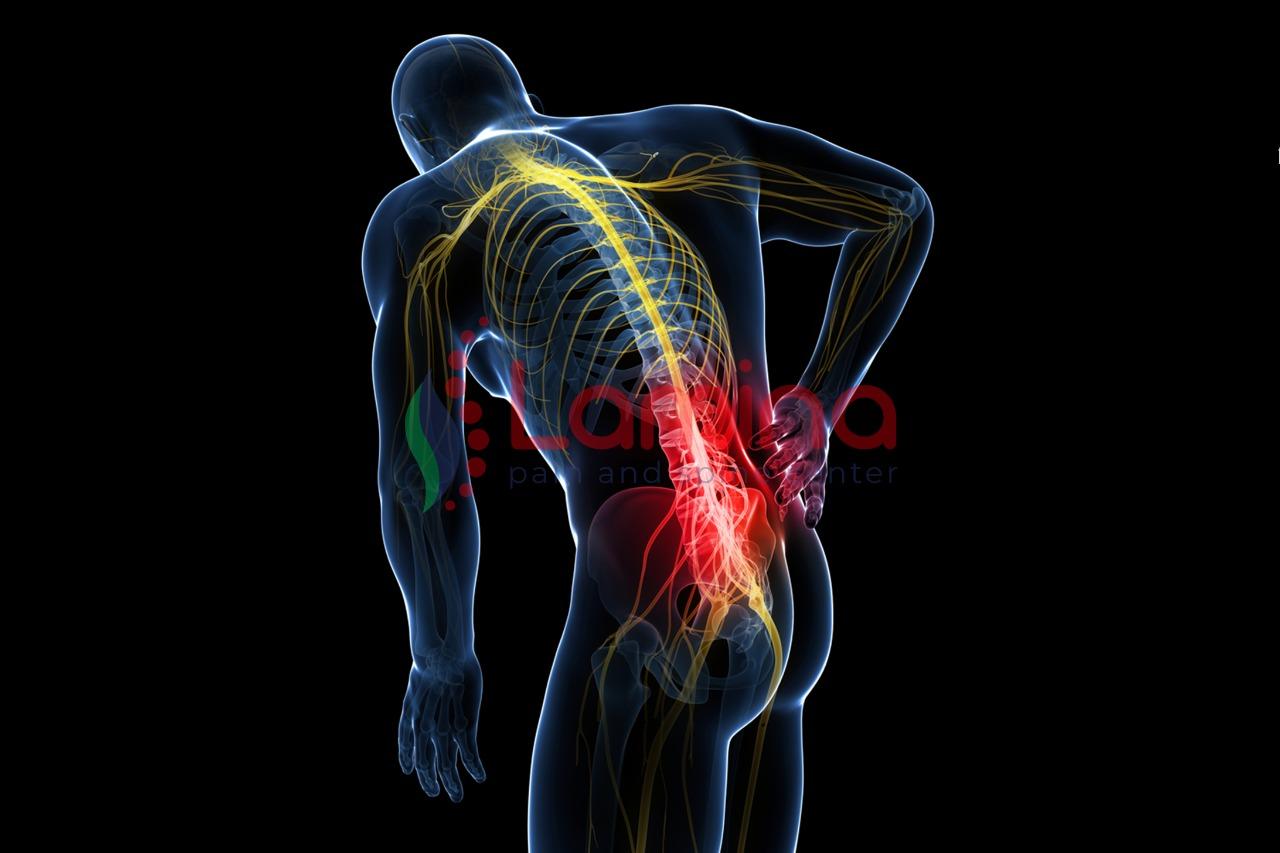 gizi tulang belakang dan saraf